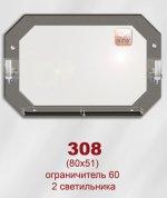 308 (80х51)